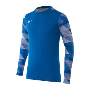 Кофта Nike Dry Park IV Goalkeeper Jersey Long Sleeve
